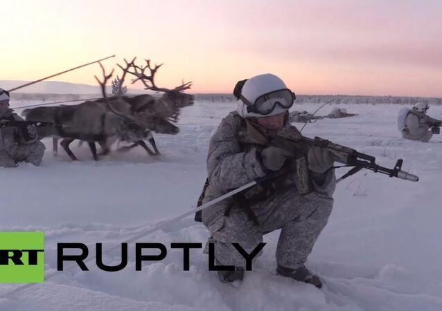 Arktičtí rozvědčíci si osvojili sobí spřežení