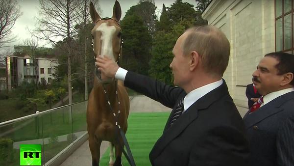 Putin daroval králi Bahrajnu závodního koně - Sputnik Česká republika
