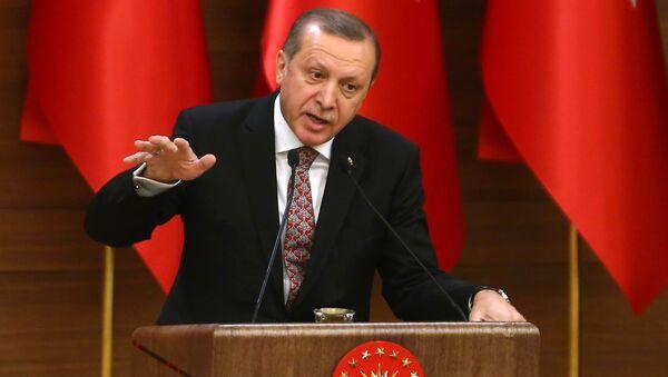 Turecký prezident Recep Tayyip Erdogan - Sputnik Česká republika