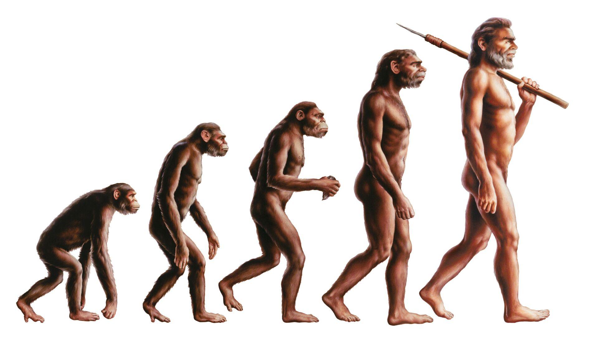 Evoluce člověka - Sputnik Česká republika, 1920, 26.02.2021