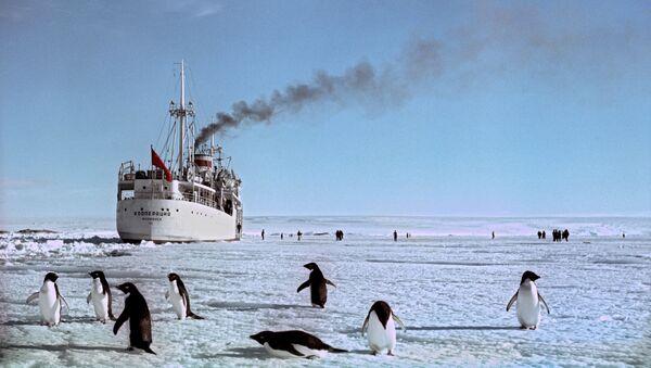 Antarktida. Ilustrační foto - Sputnik Česká republika