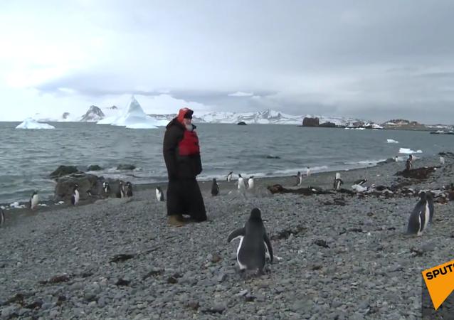 Patriarcha navštívil tučňáky na Antarktidě