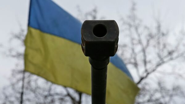 Ústí na pozadí ukrajinské vlajky - Sputnik Česká republika