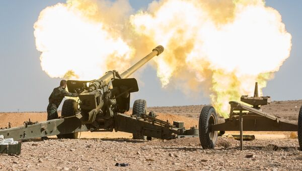 Dělostřelectvo syrské armády - Sputnik Česká republika