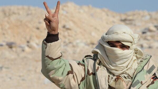Voják oddílu syrské domobrany Sokolové pouště v Palmýře - Sputnik Česká republika