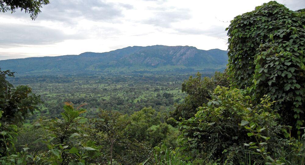 Džungle v Nigérii