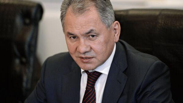 Ministr obrany RF Sergej Šojgu - Sputnik Česká republika