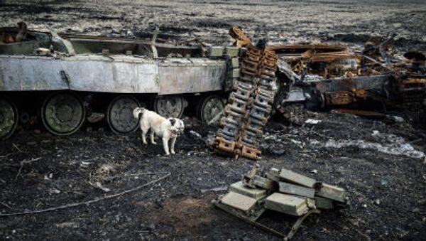 Pes vedle spaleného tanku u Debalceva - Sputnik Česká republika