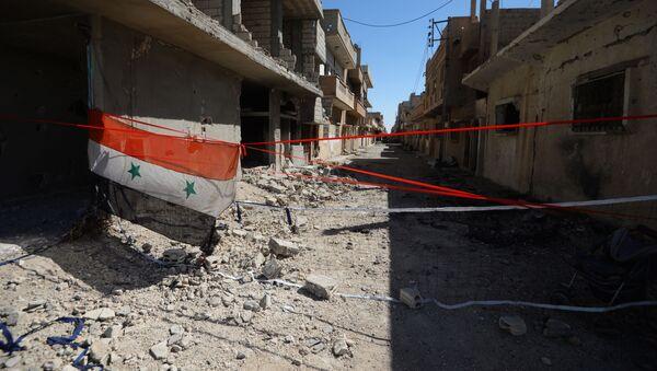 Syrská vlajka v Palmýře - Sputnik Česká republika