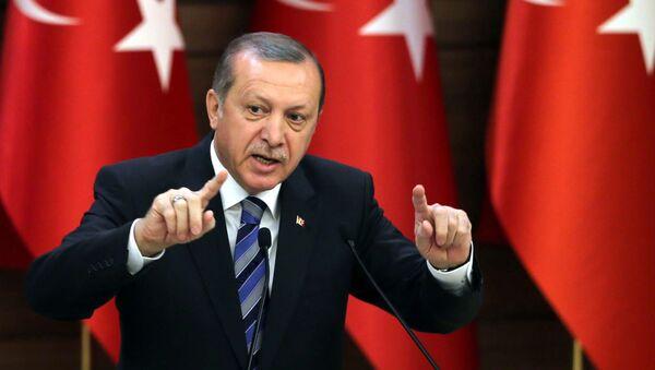 Президент Турции Реджеп Эрдоган в Анкаре - Sputnik Česká republika