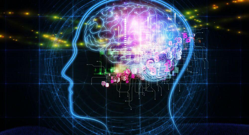 Práce mozku