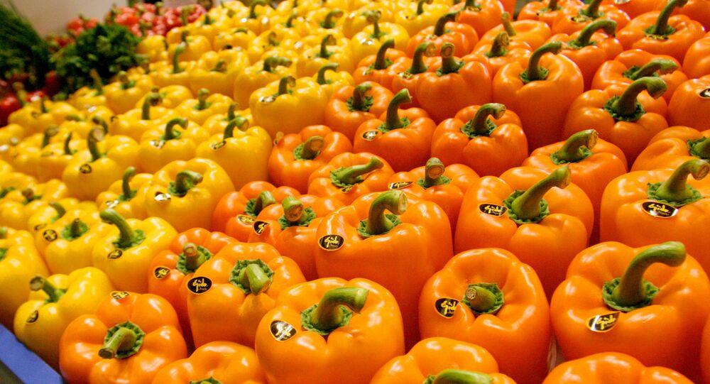 Sladká paprika