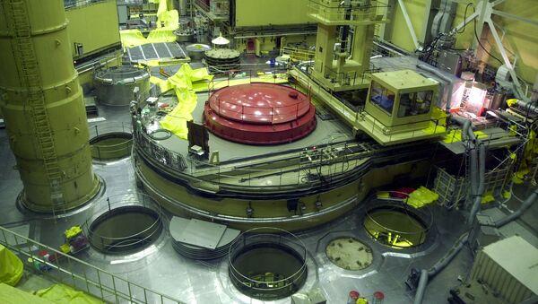 Jaderný reaktor na elektrárně Paks v Maďarsku - Sputnik Česká republika