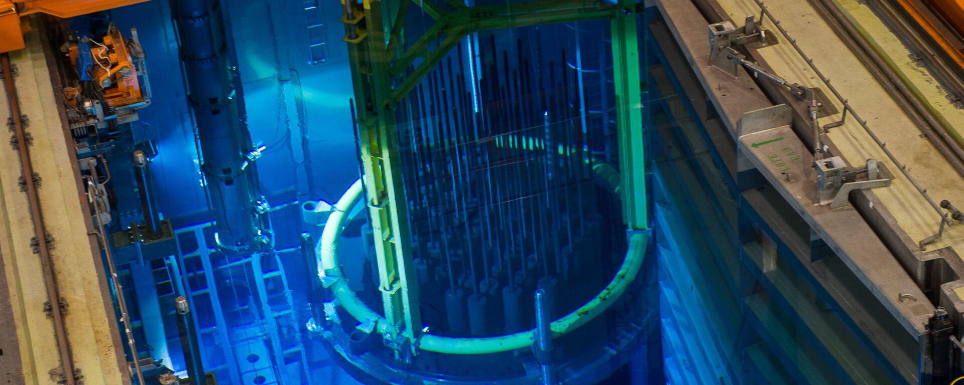 Jaderný reaktor - Sputnik Česká republika, 1920, 09.08.2016