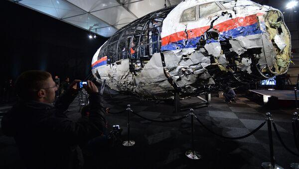 Trosky letadla MH17 - Sputnik Česká republika