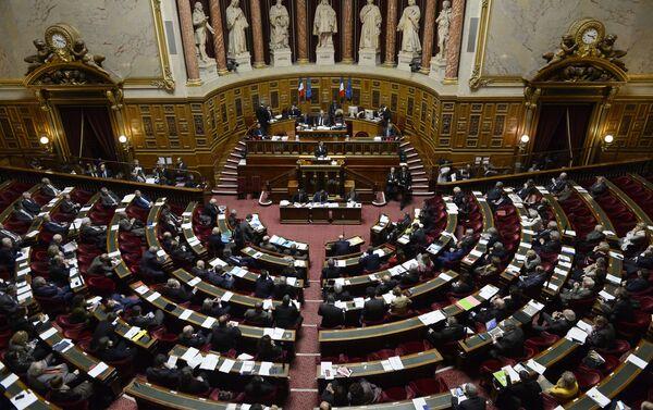 Zasedání francouzského senátu - Sputnik Česká republika