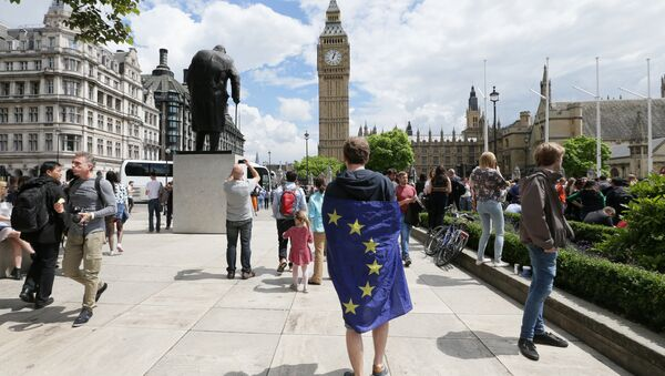 Chodec s vlajkou EU v Londýně - Sputnik Česká republika