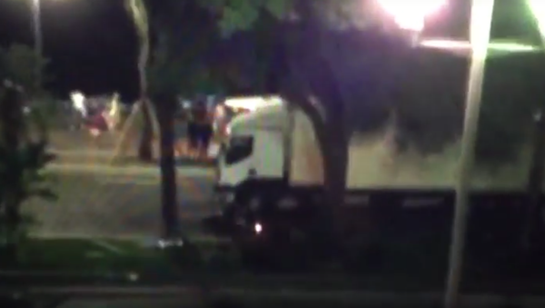 Motocyklista se snažil zastavit náklaďák teroristy v Nice - Sputnik Česká republika