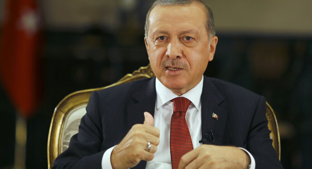 Turkish President Tayyip Erdogan attends an interview with Reuters at the Presidential Palace in Ankara, Turkey, July 21, 2016