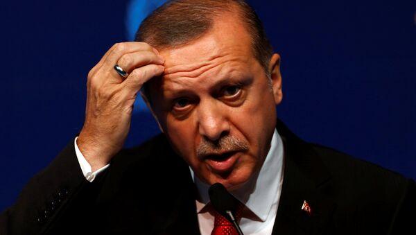 El presidente turco, Recep Tayyip Erdogan - Sputnik Česká republika