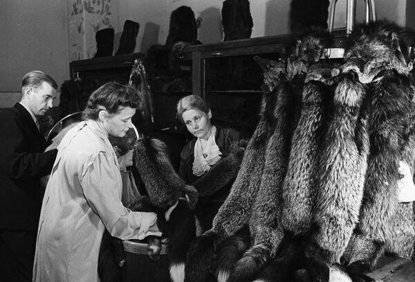 Oddělení Kožešin v obchodě CUM (Centrální obchodní dům) v Moskvě (1948) - Sputnik Česká republika