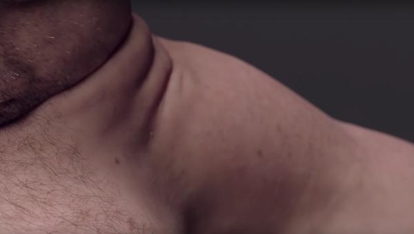 Australští vědci ukázali, jak by měl vypadat člověk, aby přežil dopravní nehodu - Sputnik Česká republika