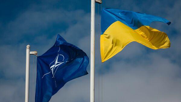 Vlajky Ukrajiny a NATO - Sputnik Česká republika