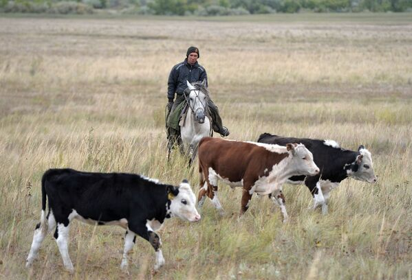 Vesnice Kidyš: jak se žije na ruském venkově - Sputnik Česká republika