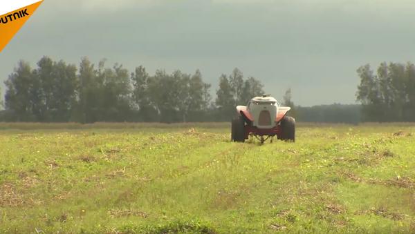 Rusové vytvořili agrorobota měnícího farmaření v radost - Sputnik Česká republika
