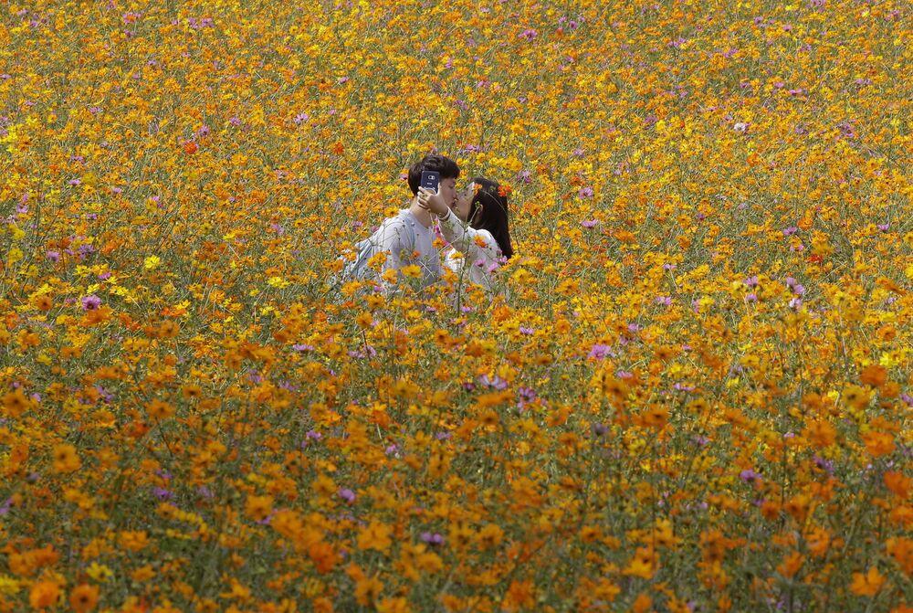 Milenci dělají selfii na květinovém poli, Soul, Jižní Korea
