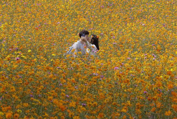 Milenci dělají selfii na květinovém poli, Soul, Jižní Korea - Sputnik Česká republika