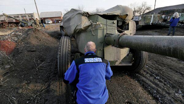 Pozorovatel OBSE - Sputnik Česká republika