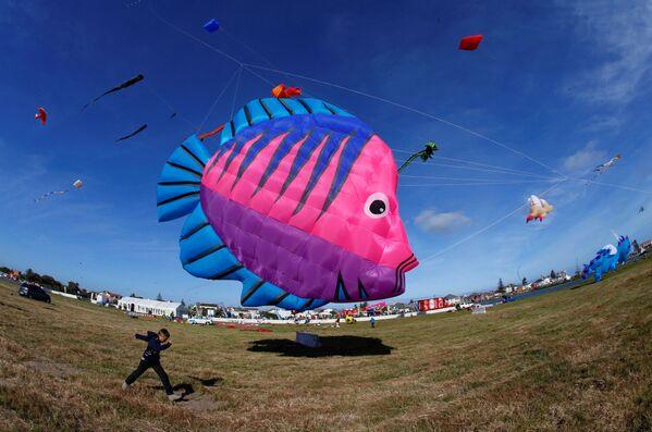 Mezinárodní festival draků v Kapském městě, Jižní Afrika. - Sputnik Česká republika