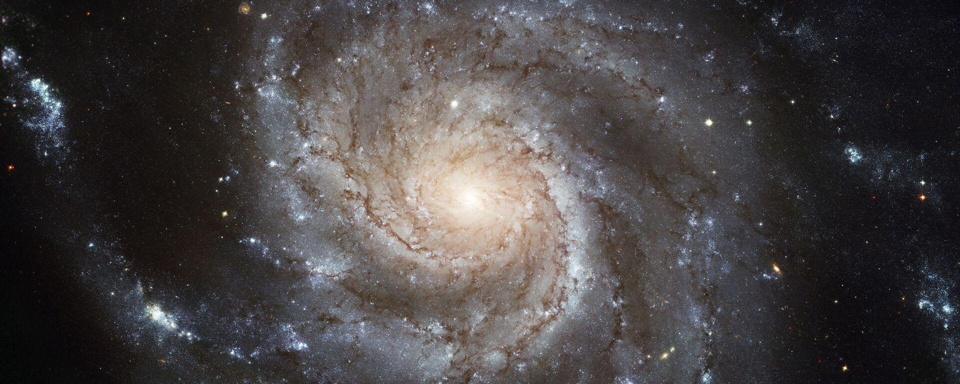 Galaxie Větrník – galaxie v souhvězdí Velké medvědice   - Sputnik Česká republika, 1920, 22.06.2021