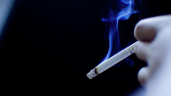 Smoking - Sputnik Česká republika