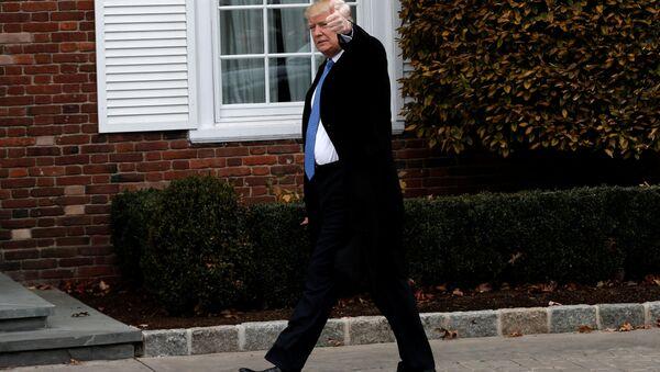 Nově zvolený prezident USA Donald Trump - Sputnik Česká republika