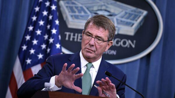 Americký ministr obrany Ashton Carter - Sputnik Česká republika