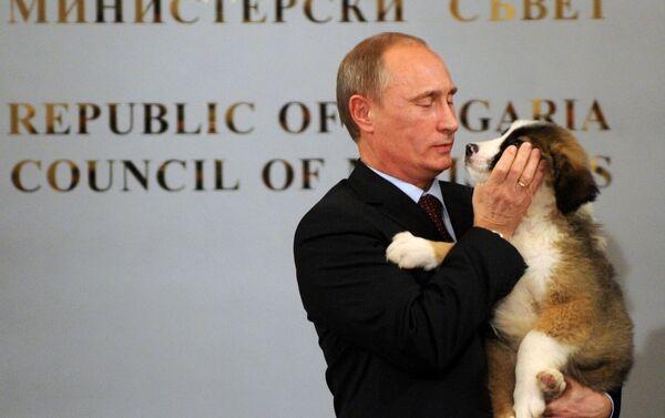 Pravý vůdce ví, kdy je nutné použít sílu a kdy je vhodný něžný dotyk - Sputnik Česká republika