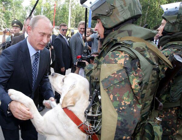 Milovník psů Vladimir Putin - Sputnik Česká republika