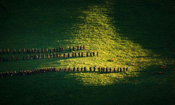 Práce vítězů soutěže Travel Photographer of the Year 2016 - Sputnik Česká republika