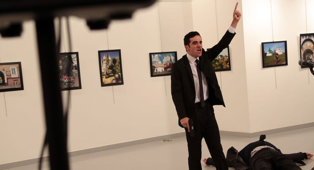 Vrah velvyslance. Ankara