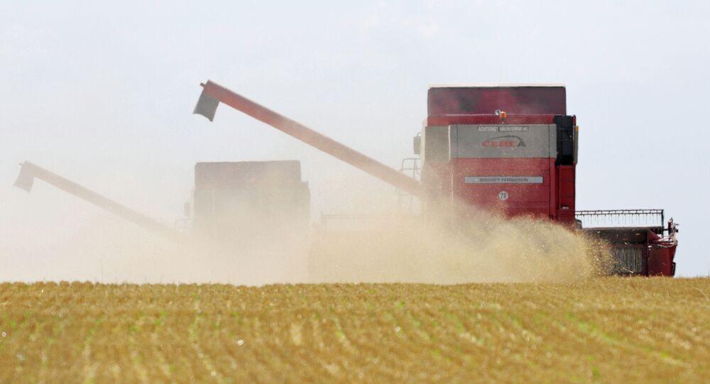 Zemědělství. Ilustrační foto