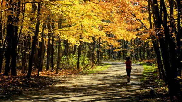 Žena běží lesem - Sputnik Česká republika