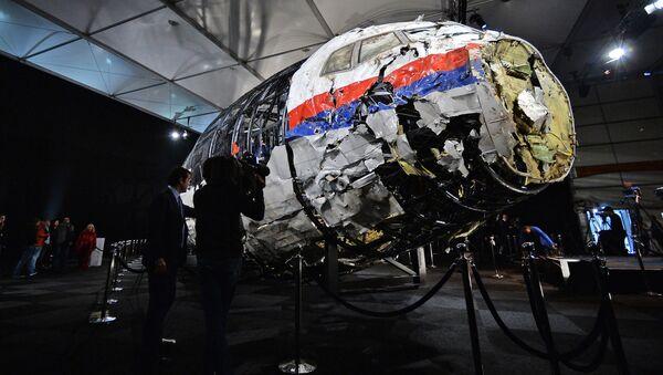 Zpráva nizozemské bezpečnostní rady o zřícení Boeingu 777 letu MH17 - Sputnik Česká republika