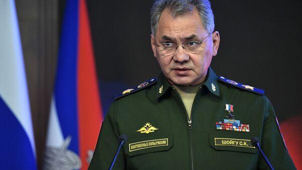 Ruský ministr obrany, armádní generál Sergej Šojgu - Sputnik Česká republika