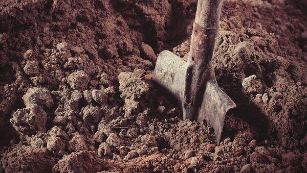 Lopata. Ilustrační foto - Sputnik Česká republika