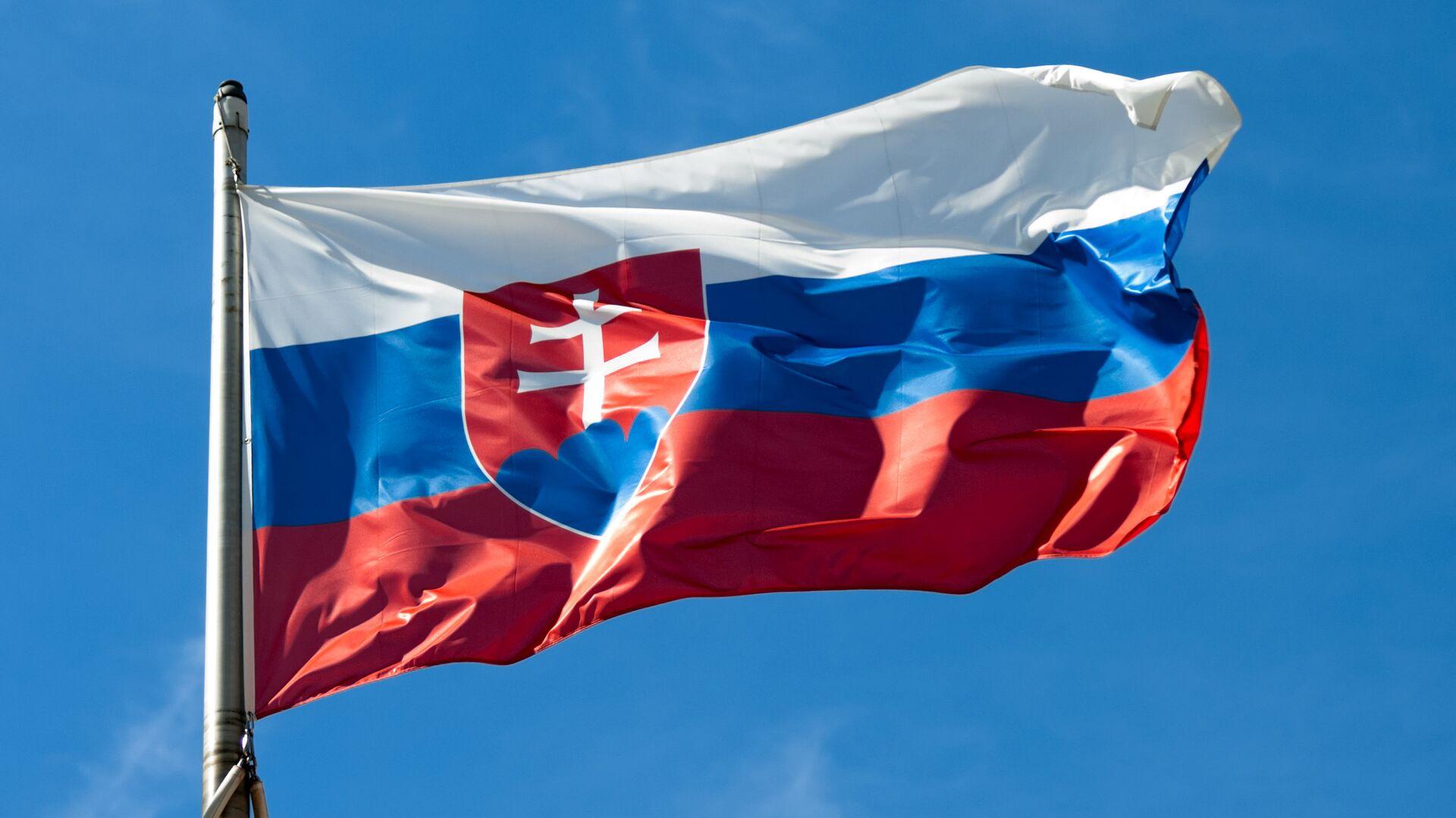 Slovenská vlajka  - Sputnik Česká republika, 1920, 28.01.2021