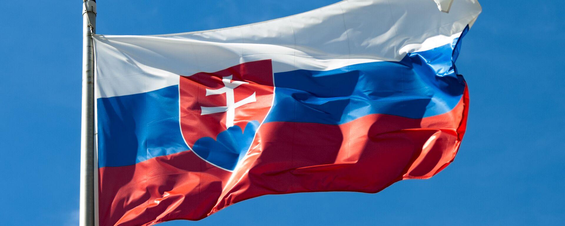 Slovenská vlajka  - Sputnik Česká republika, 1920, 30.06.2021