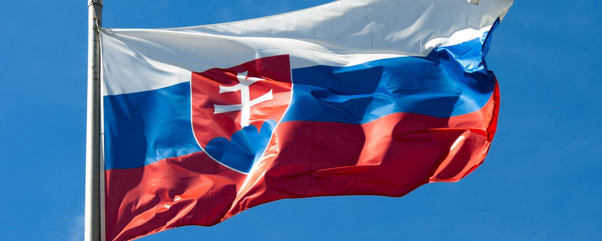 Slovenská vlajka  - Sputnik Česká republika, 1920, 03.05.2021