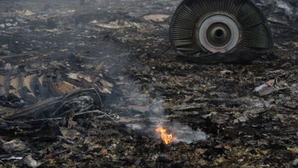Na místě havárie Boiengu MH17 - Sputnik Česká republika